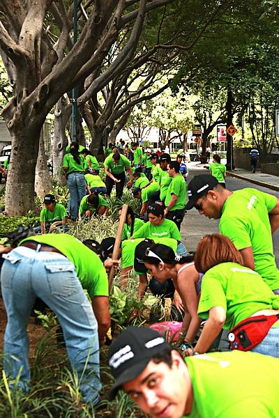 """Con el programa """"De vuelta a la tierra"""" el Voluntario Telefónica lleva a cabo iniciativas de reciclaje, reutilización de materiales y protección del medio ambiente, en las que participan los empleados de la compañía en Venezuela"""
