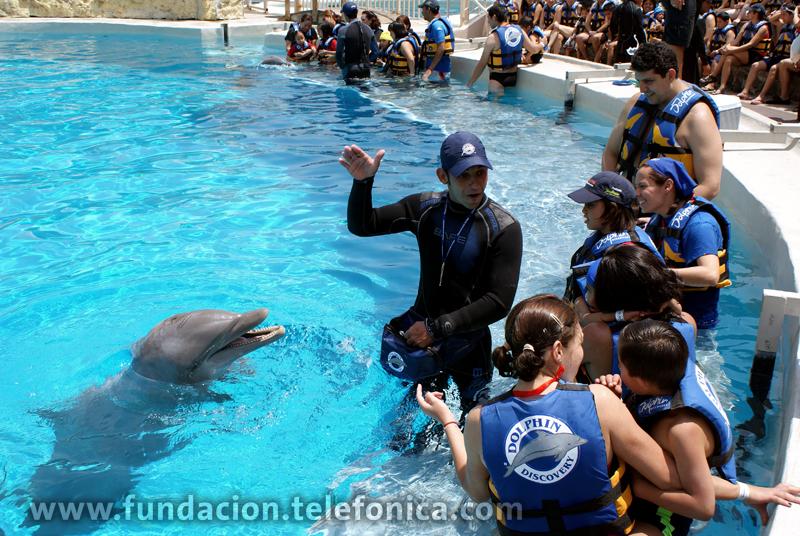 Sesión de natación con delfines para niños con Síndrome de Down y Autismo.