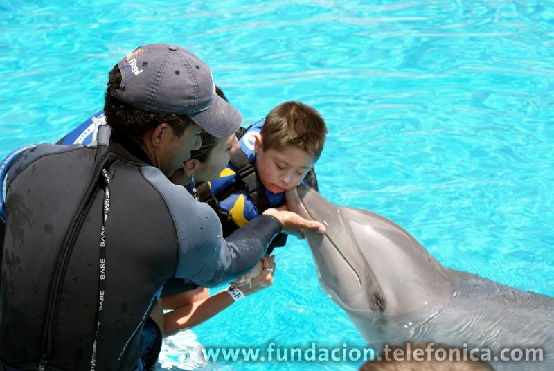 Está comprobado que los delfines ayudan a mejorar el funcionamiento cerebral y coordinación de los pequeños.