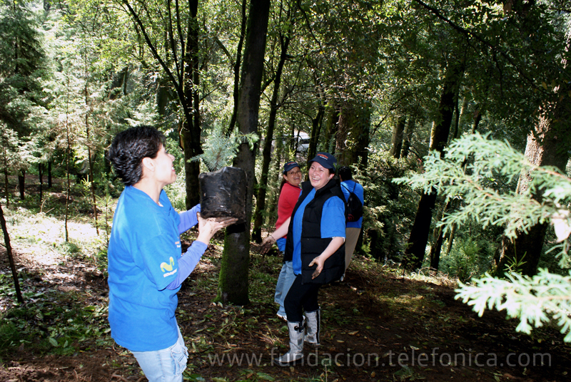 Cadena ecológica formada por los Voluntarios Telefónica durante la reforestación.