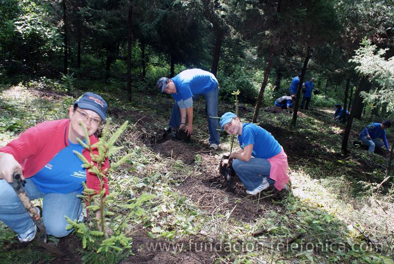 Este año se cumplió con el objetivo de plantar 1,500 árboles.