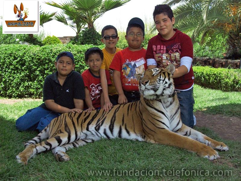 Parque Animalizate.