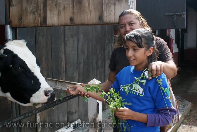 Parque Animalizate. Convivencia con animales de granja.