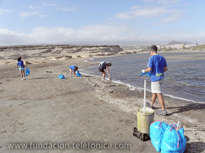 En Tenerife nuestros voluntarios trabajaron por la protección de las aves y el entorno natural de la isla.