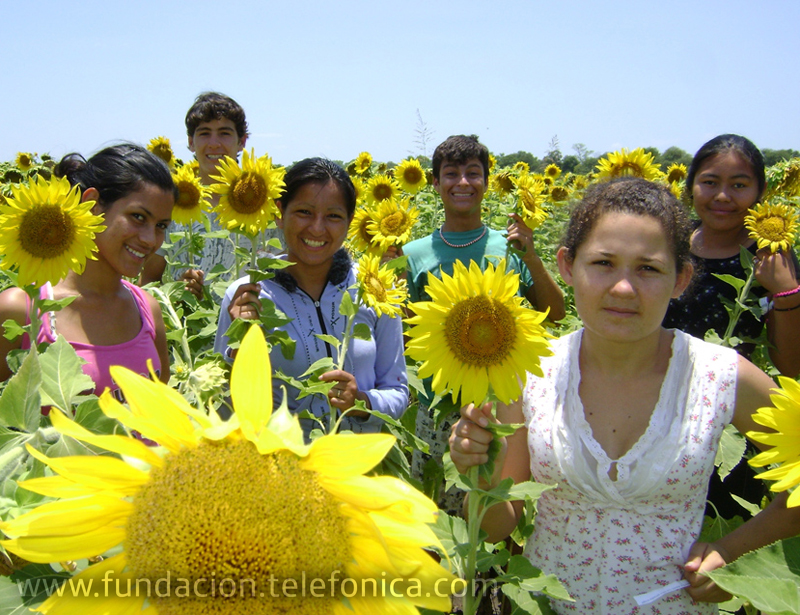 """El grupo """"Los Girasoles"""", de Argentina, es el ganador de la primera fase del concurso """"Hoy Escolar"""" de periodismo digital."""
