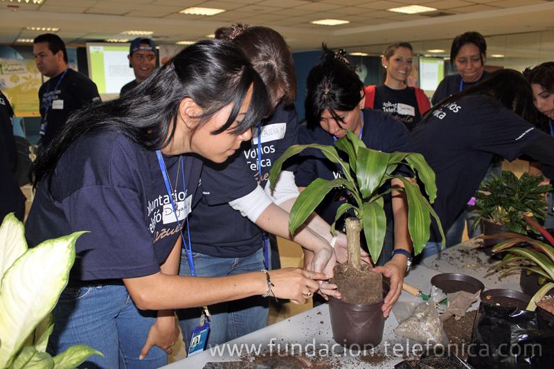 """Voluntarios Telefónica recibieron  taller """"Soy Voluntario Ambiental""""."""