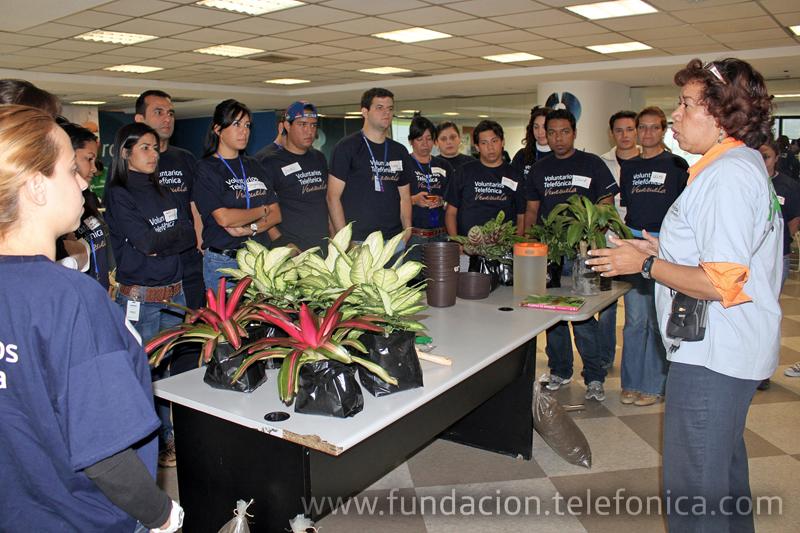 La Gobernación de Miranda y el grupo de jóvenes de Ecoguía brindaron a empleados de Telefónica una capacitación para convertirse en voluntarios ambientales y ser difusores de la conservación del ambiente.