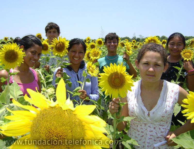 El grupo Los Girasoles (Argentina), fue el ganador de la primera fase de la segunda edición del concurso.