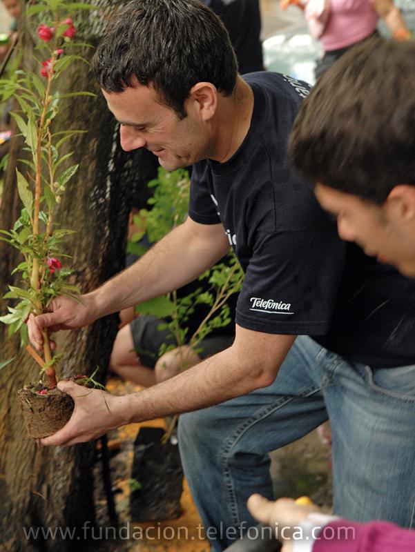 Con la participación conjunta de Voluntarios Telefónica, vecinos y jóvenes profesionales de ECOGUIA, el Vivero Comunal de los Palos Grandes fue el escenario escogido para recuperar sus áreas, sembrar plantas y remodelar sus espacios.