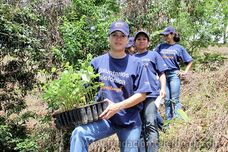 Voluntarios de Telefónica en Panamá participaron en una jornada dedicada a la naturaleza y la solidaridad