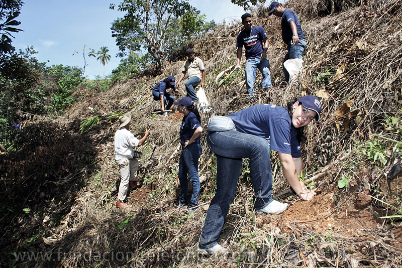 En Panamá cerca de la mitad de los empleados de Telefónica participan en el programa de voluntariado de manera activa.