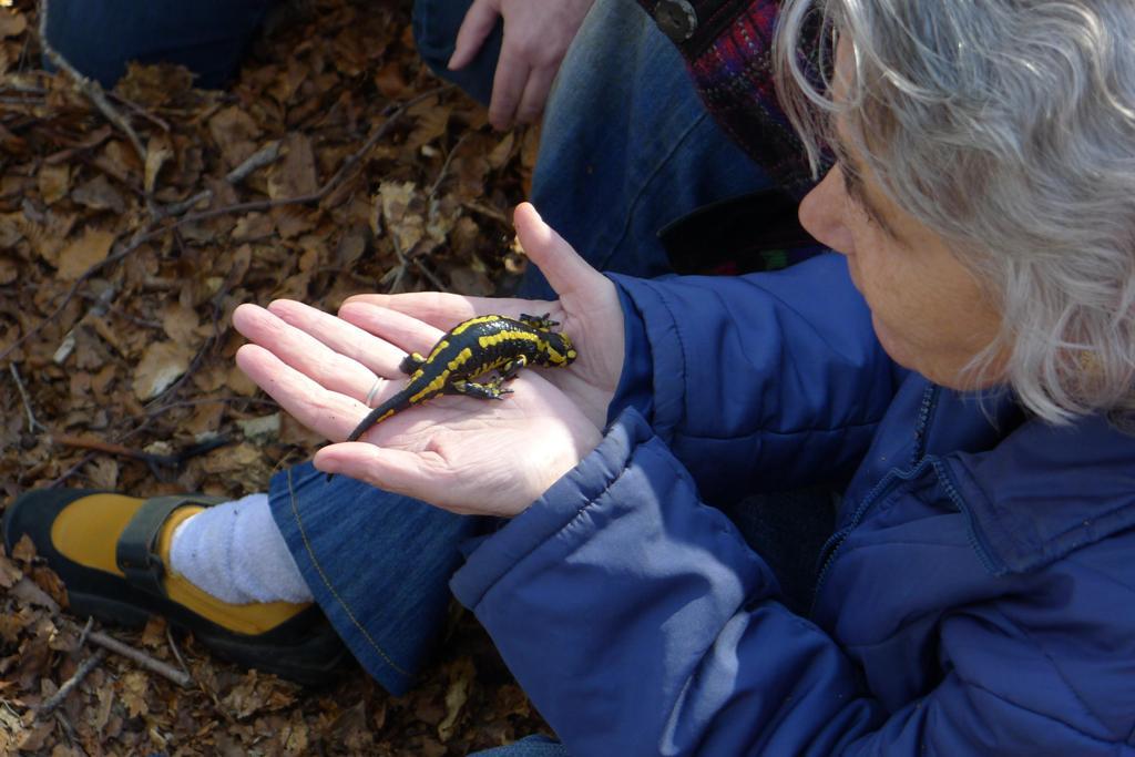 Una invidente reconoce una salamandra para incorporarla al escenario de la obra multisensorial.