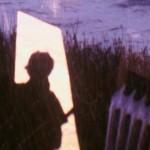 """Fundación Telefónica presenta """"El ver de los árboles"""" programa de cine experimental argentino contemporáneo."""