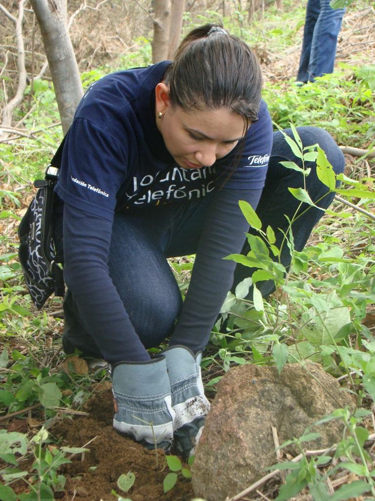 Los Voluntarios sembraron más de 100 arboles de pochote, madroño, guanacaste y otros en el área designada por Fundenic.