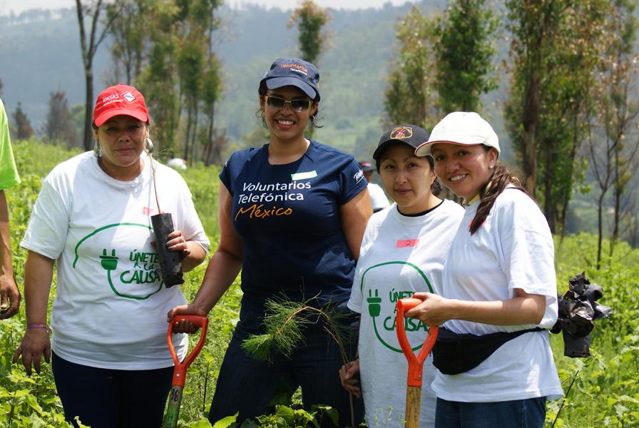 Se contó con la participación de 250 Voluntarios.