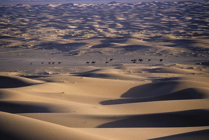 Desierto de Zagora, Marruecos, 1988. ©VWD