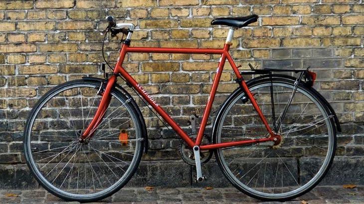 bicicletas-voluntarios-730x410