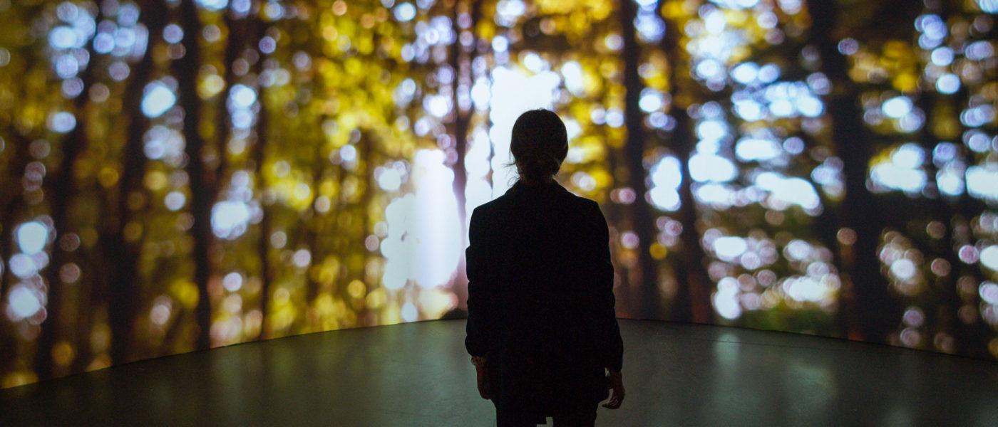 #CulturaSegura: haz tu reserva antes de venir a ver nuestras exposiciones